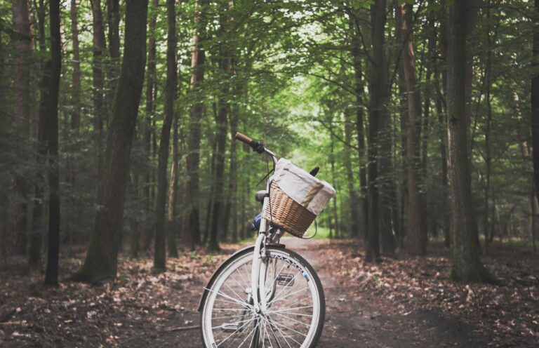 Hvorfor er cykler så stor en del af dansk kultur?